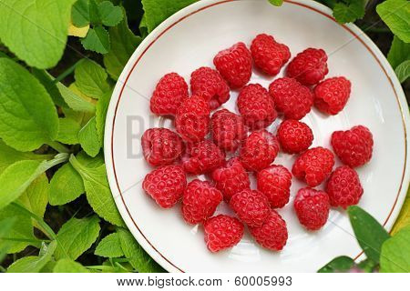 Saucer With Raspberries