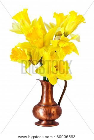 yellow narcissus flowers