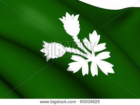 Flag Of Oppland