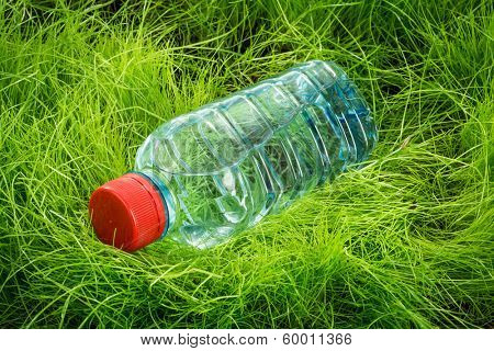Bottle of water on the green grass.