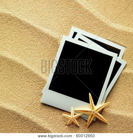 Old style empty photo cards lying on a sea sand and framed with shells. Sunny summer background