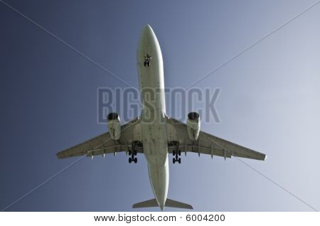 Looking Up At The Airplane