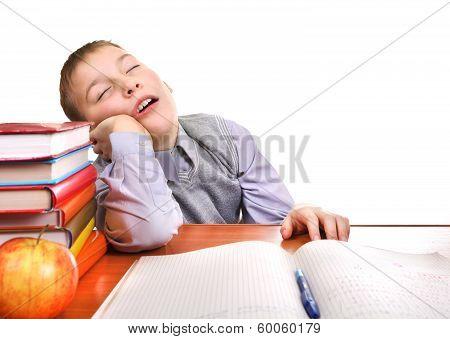 Bored Schoolboy Is Sleeping