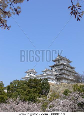 Himeji Distant View