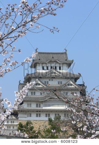 Himeji Tower