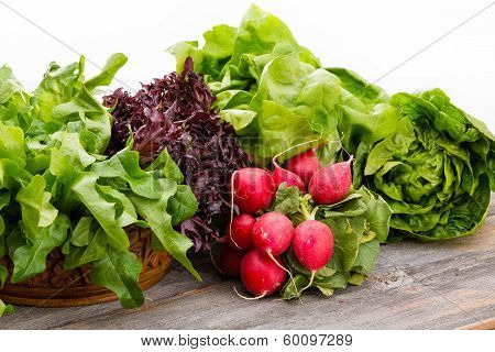 Healthy Fresh Salad Ingredients