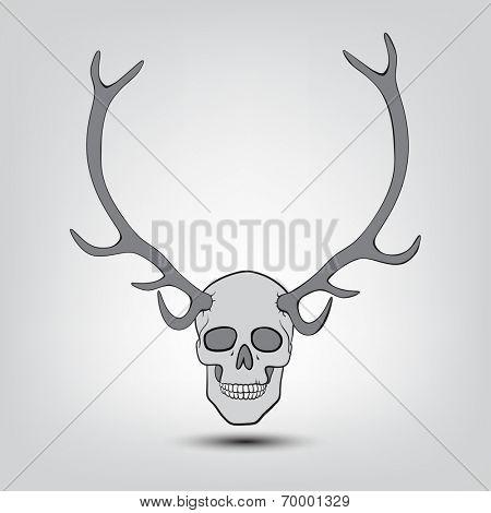 hornet human skulls trophy on wall