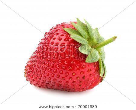 Strawberry Closeup.