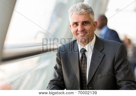 handsome middle aged businessman in modern office
