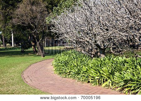 Curved Paved Walkway In Botanical Garden Setting