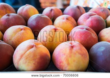 Freshly Harvested Peaches In A Crate