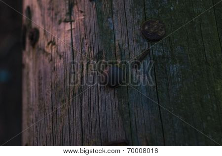 wood with nails by streetlight