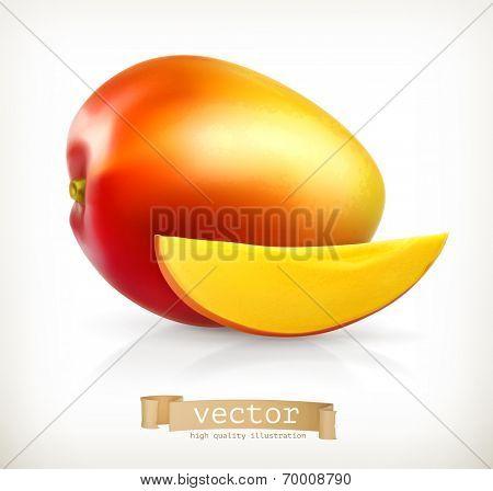 Mango, vector illustration
