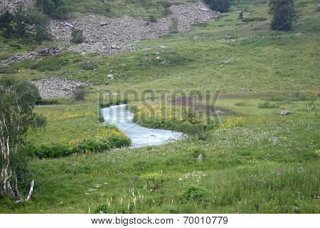 Alpine Landscape With A River
