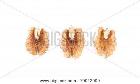 Close up of walnut kernels.