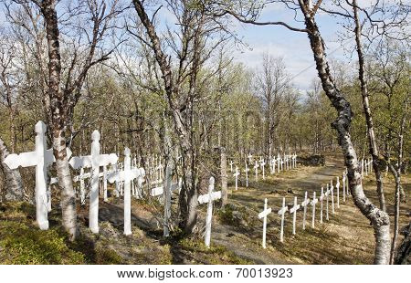 BJORKLIDEN, SWEDEN ON JUNE 14. Crosses at the Navvy Cemetery on June 14, 2010 in Bjorkliden, Sweden.