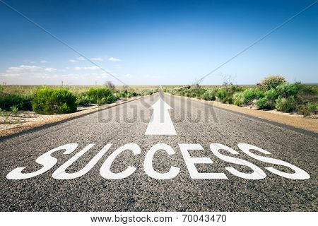 An image of a road to the horizon with text success