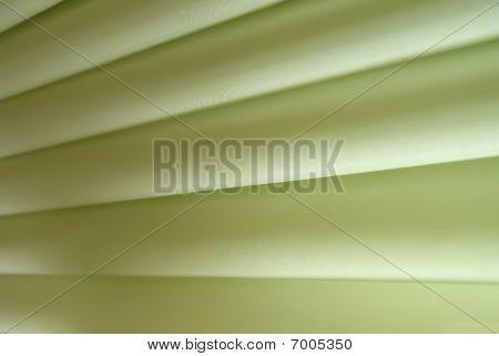 Green Tissue Texture