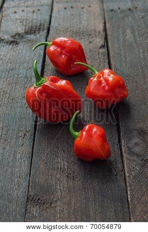 Red Chili Pepper Habanero