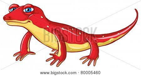 Illustration of a close up red lizard