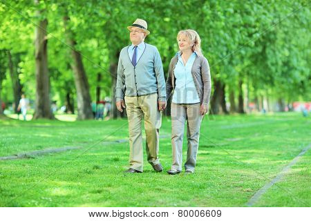Mature couple going for a walk in a park on a sunny summer day