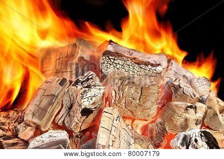Flaming Coals Close-up