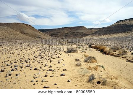 Sand And Ravine
