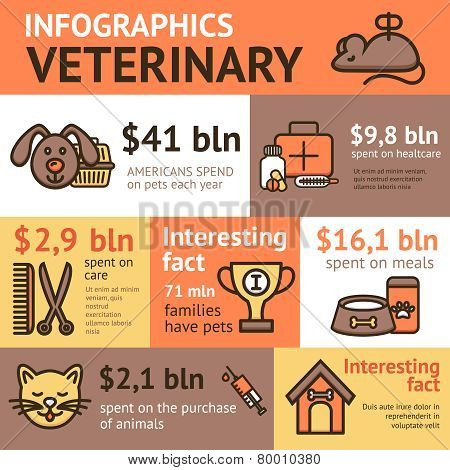 Veterinary Infographic Set
