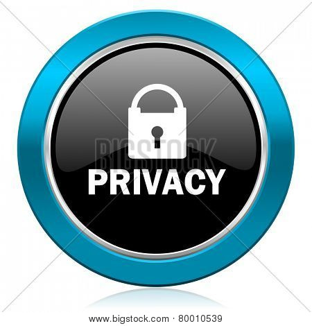 privacy glossy icon