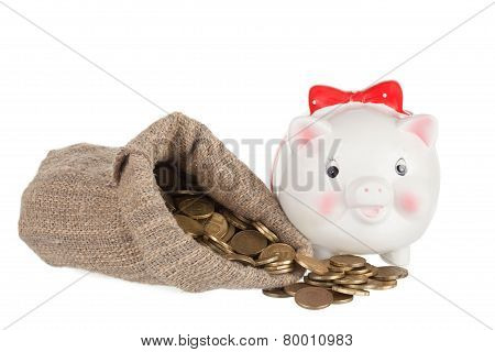 White a pig-coin box and the big bag with gold coins