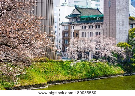 Tokyo, Japan view of buildings around Chidorigafuchi moat in the spring.