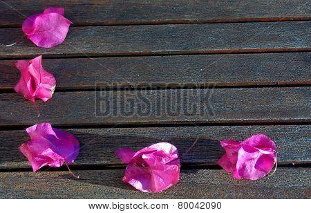 Five Pink Petals