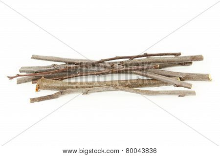 Plum branches over white background