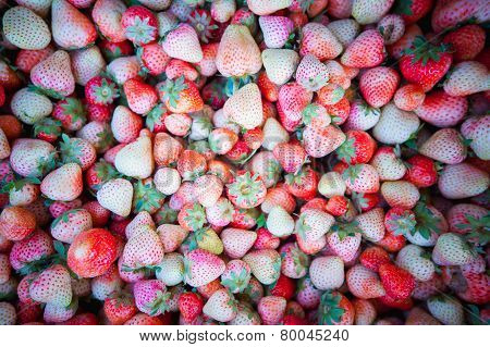 Freshly Harvested Strawberries Forming A Background