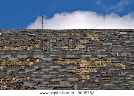 Tattered Roof