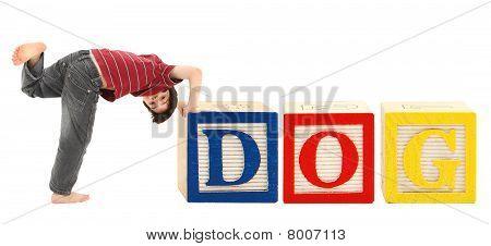 Alphabet Blocks And Adorable Boy Dog