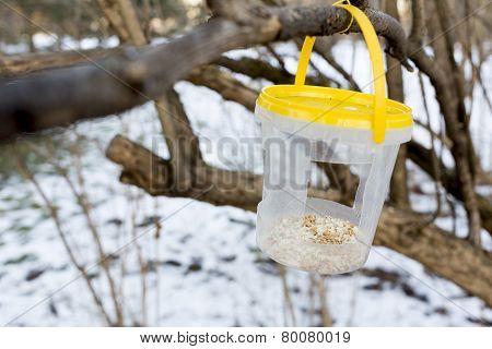 Bird Feeder Park