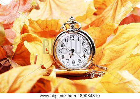 Silver pocket clock in autumn leaves