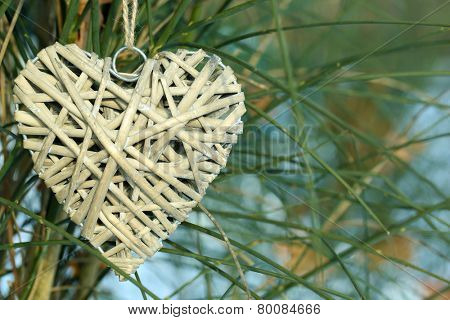 Bush with heart decoration on nature background