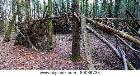 Primitive Log Shelter Illinois