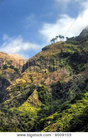 Back Mountains Of Madeira Island