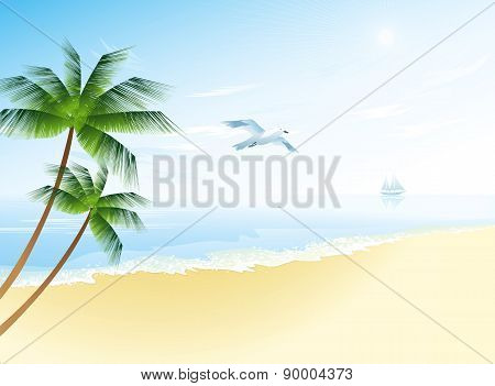 Summer beach with palm trees