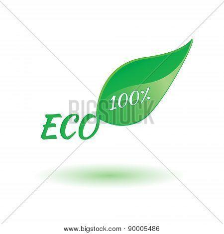 Eco Product Leaf Illustration