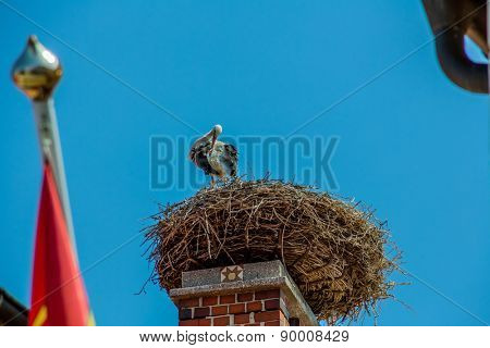 a stork nest on a achornstein in rust. burgenland, austria