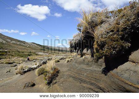 Tongariro Trek Landscape, Nz