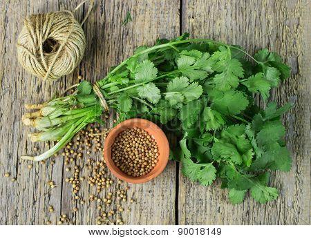 Bunch Fresh Cilantro And Coriander Seeds