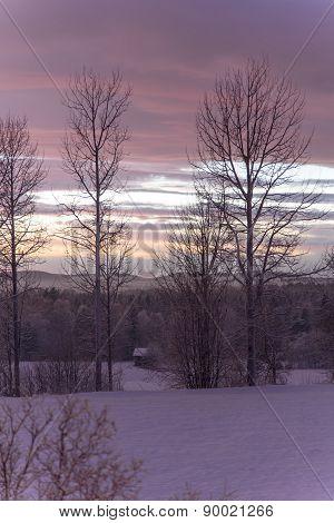 Rual Winter Evening