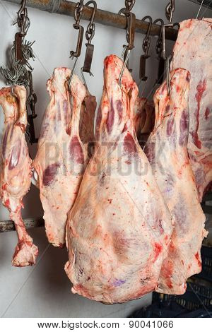 Fresh red meat hanging in butchery
