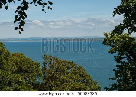 View of Sea through a frame of trees