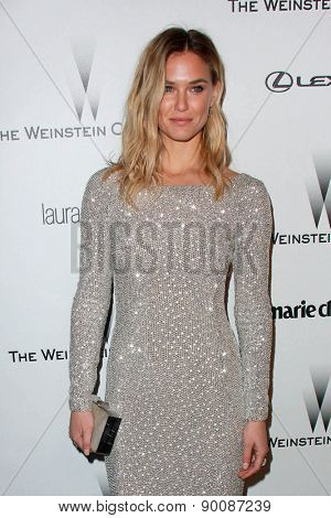 LOS ANGELES - JAN 11:  Bar Refaeli at the The Weinstein Company / Netflix Golden Globes After Party at a Beverly Hilton Adjacent on January 11, 2015 in Beverly Hills, CA